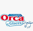 Orca glaces